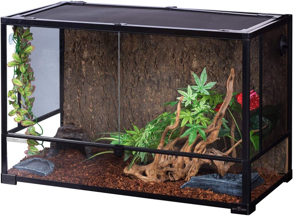 tank for leopard gecko